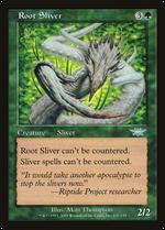Root Sliver image