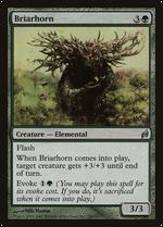 Briarhorn image