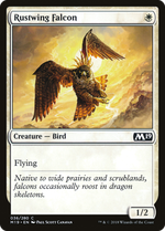 Rustwing Falcon image
