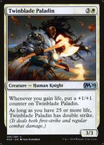 Twinblade Paladin image