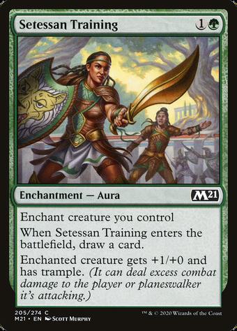 Setessan Training image