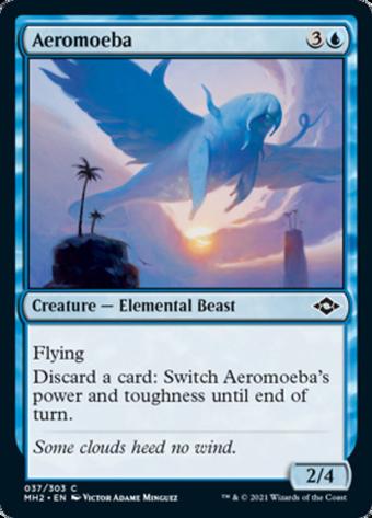 Aeromoeba image