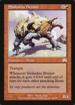 Shaleskin Bruiser image