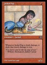 Jackal Pup image