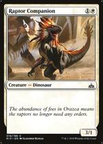 Raptor Companion image