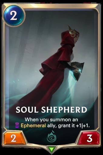 Soul Shepherd image