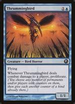 Thrummingbird image