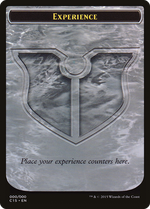 Experience Card image