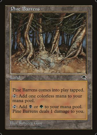 Pine Barrens image