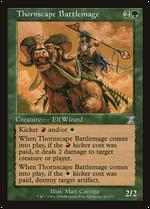Thornscape Battlemage image