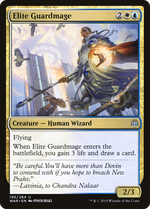 Elite Guardmage image