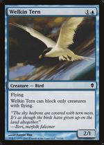 Welkin Tern image