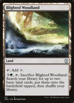 Blighted Woodland image