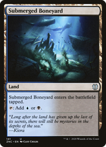 Submerged Boneyard image