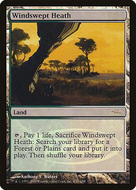 Windswept Heath image