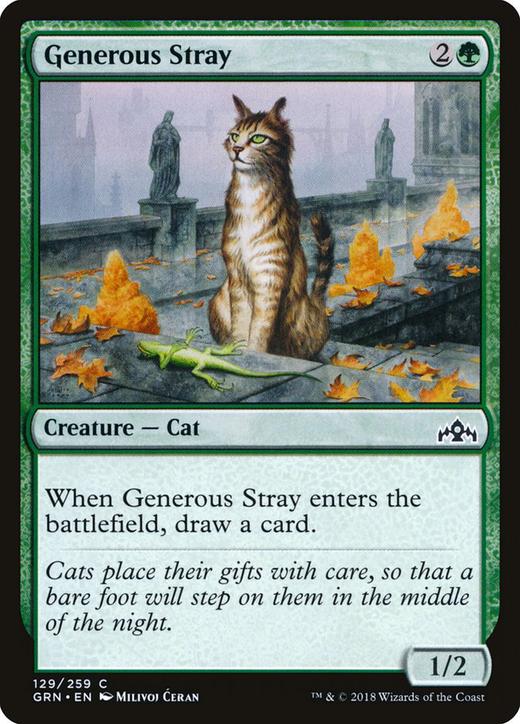 Generous Stray image