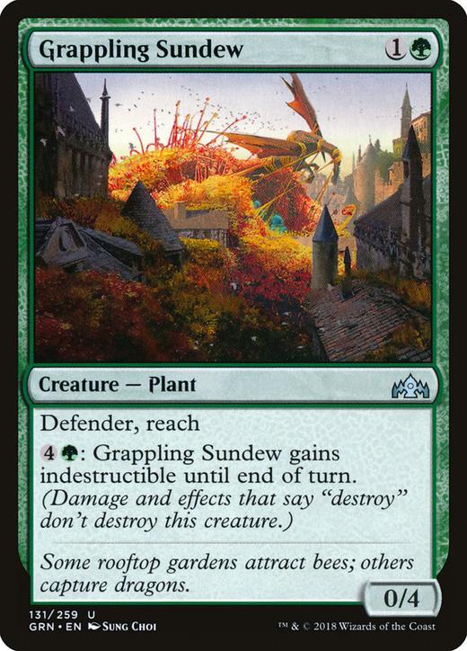 Grappling Sundew image
