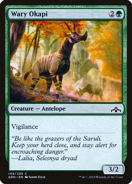 Wary Okapi image