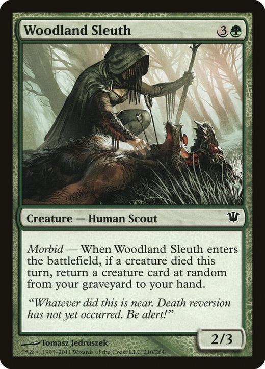 Woodland Sleuth image