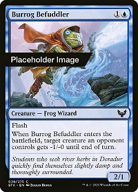 Burrog Befuddler image