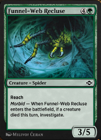 Funnel-Web Recluse image