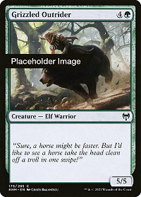 Grizzled Outrider image