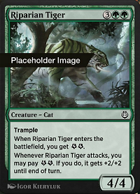 Riparian Tiger image