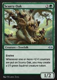 Scurry Oak image