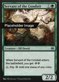 Servant of the Conduit image