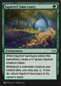 Squirrel Sanctuary image