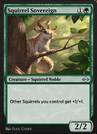 Squirrel Sovereign image