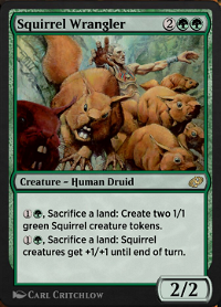 Squirrel Wrangler image