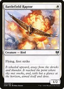 Battlefield Raptor image