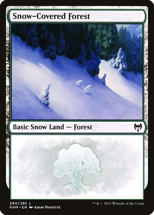 Snow-Covered Forest image