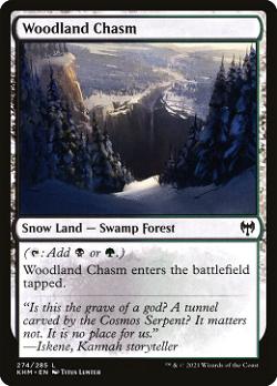 Woodland Chasm image