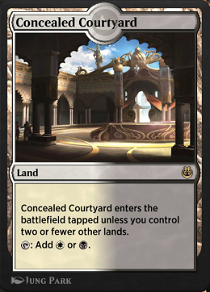 Concealed Courtyard image