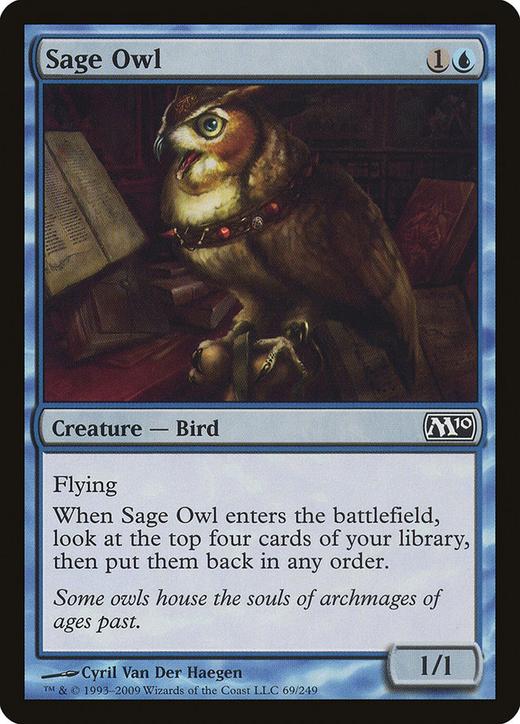 Sage Owl image