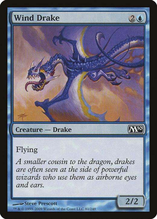 Wind Drake image