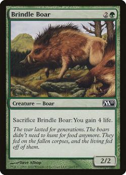 Brindle Boar image