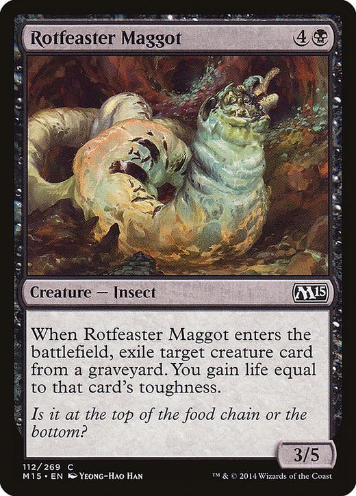 Rotfeaster Maggot image