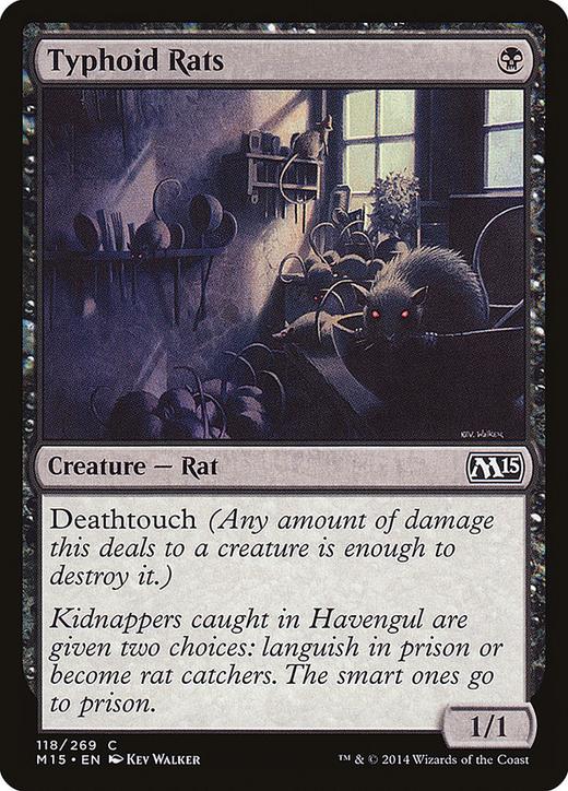 Typhoid Rats image