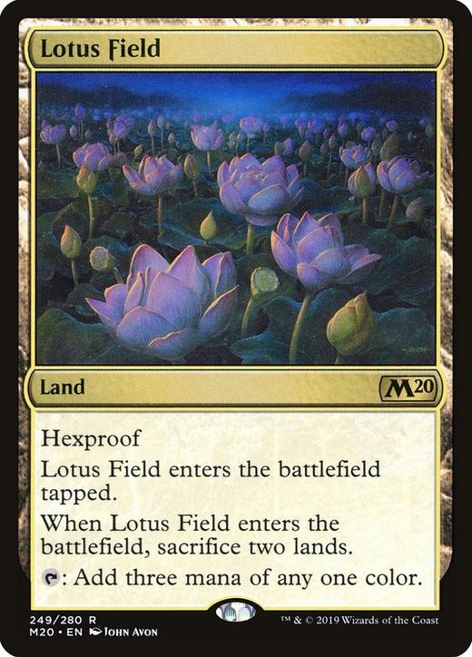 Lotus Field?&width=200