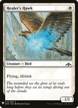 Healer's Hawk image
