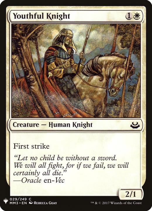Youthful Knight image