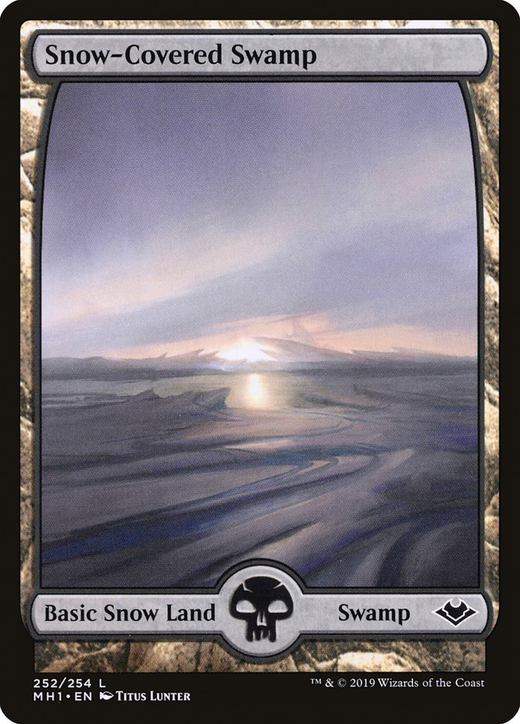 Snow-Covered Swamp image