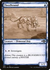 Floodhound image