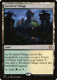 Fortified Village image