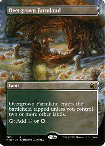 Overgrown Farmland image