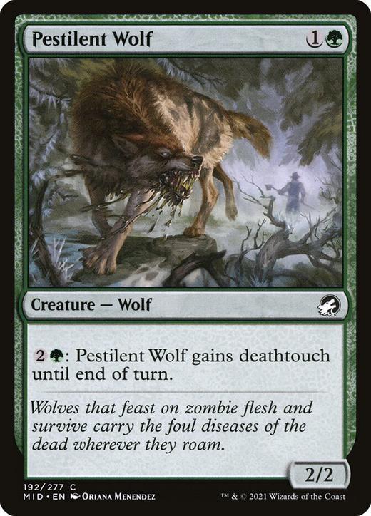 Pestilent Wolf image
