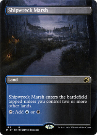 Shipwreck Marsh image
